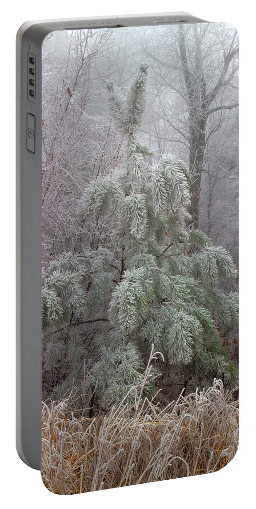 Frosted Pine Portable Battery Charger featuring the photograph Frosty Pine by Michael Eingle