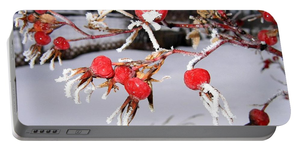 Frost Portable Battery Charger featuring the photograph Frosty Rosehips by Will Borden