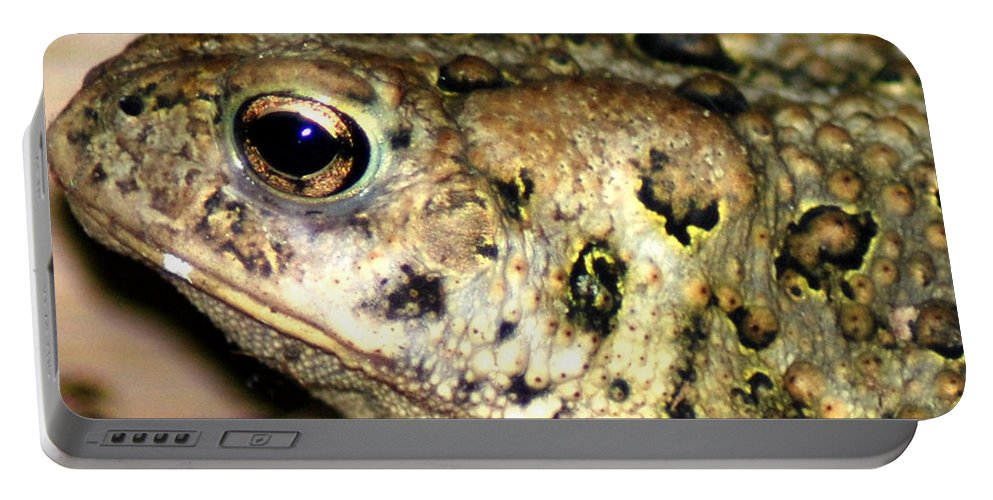 Portable Battery Charger featuring the photograph Frown by Optical Playground By MP Ray