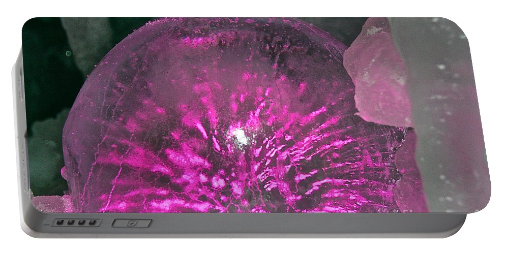 Ice Portable Battery Charger featuring the photograph Frozen Fuchsia by Susan Herber