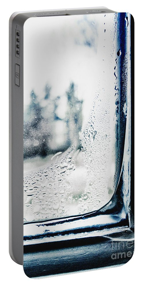 Window Portable Battery Charger featuring the photograph Frozen Windowpane by Margie Hurwich