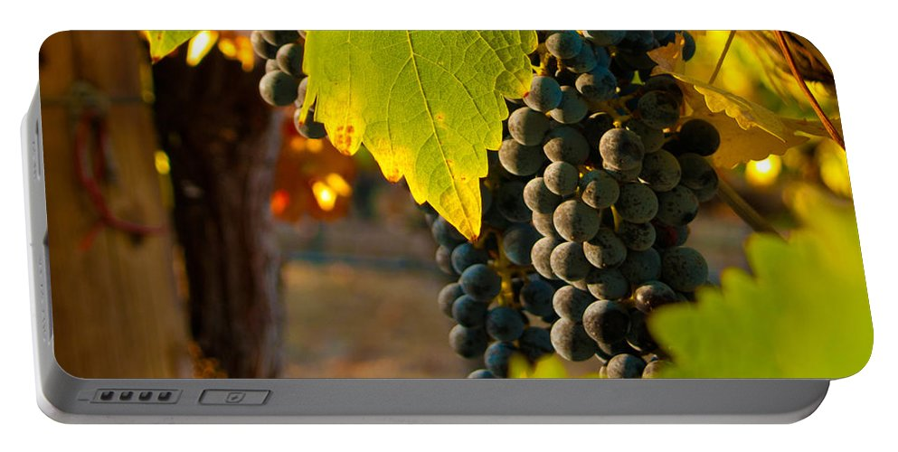 Grape Portable Battery Charger featuring the photograph Fruit Of The Vine by Bill Gallagher