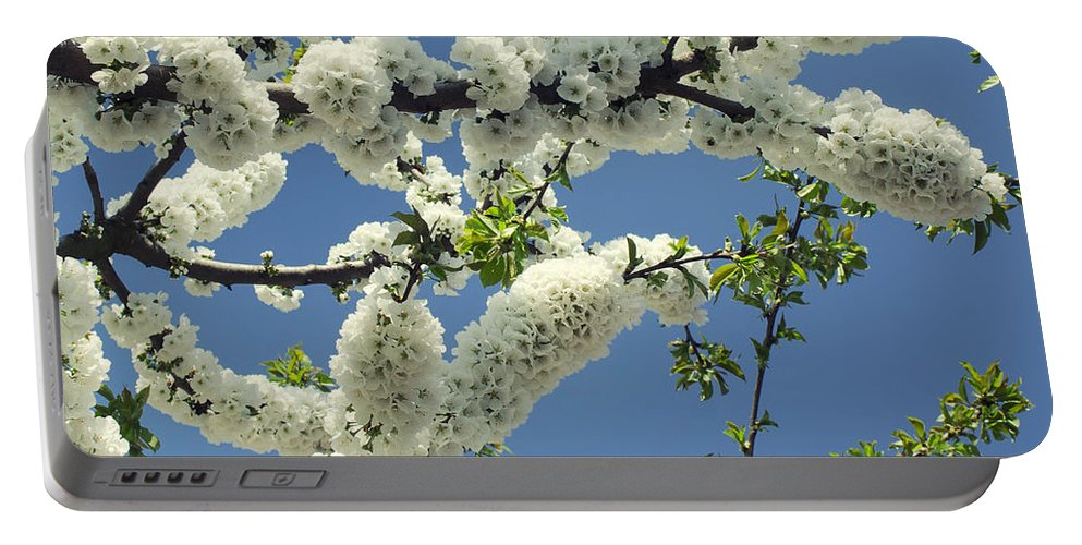 White Portable Battery Charger featuring the photograph Fruit Tree Blooms by TouTouke A Y