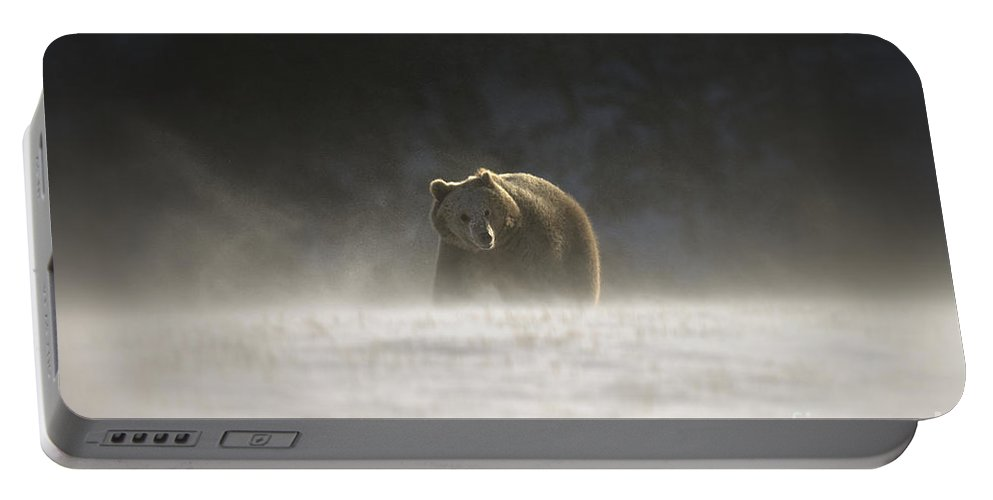 Grizzly Bear Portable Battery Charger featuring the photograph Blizzard Bear by Wildlife Fine Art