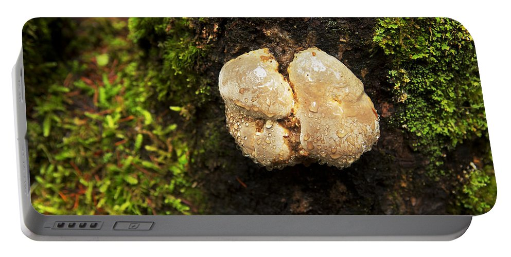 Nature Portable Battery Charger featuring the photograph Funghi by Belinda Greb