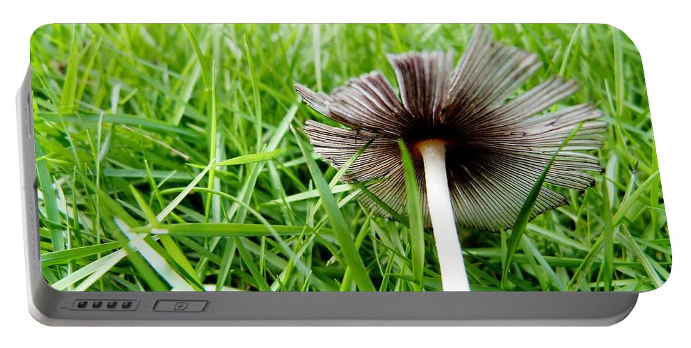Color Portable Battery Charger featuring the photograph Fungi by Amar Sheow