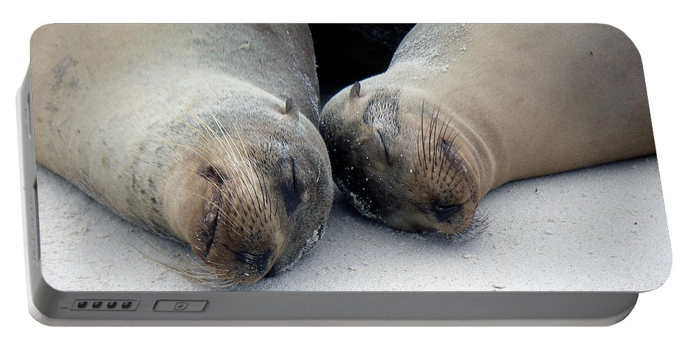 Galapagos Portable Battery Charger featuring the photograph Galapagos Islands 04 by Jeff Brunton