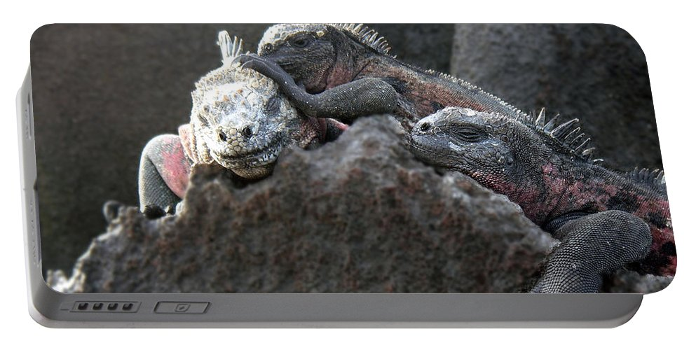 Galapagos Portable Battery Charger featuring the photograph Galapagos Islands 09 by Jeff Brunton