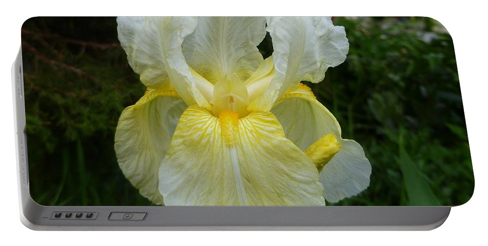 Beautiful Iris Portable Battery Charger featuring the photograph Garden Fairy Of Sunset by Lingfai Leung