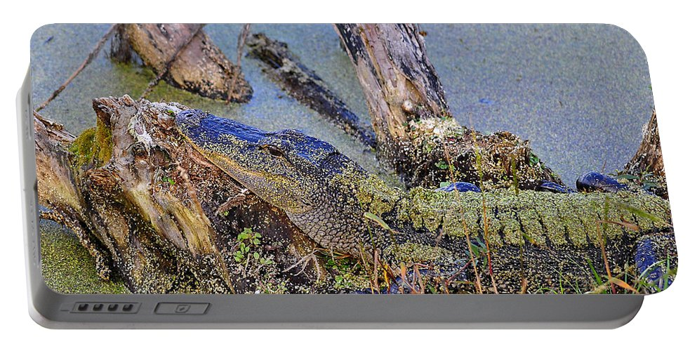 Alligator Portable Battery Charger featuring the photograph Gator Camo by Al Powell Photography USA