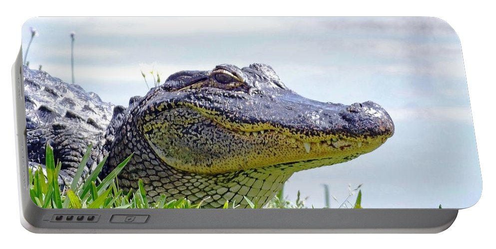 Alligator Portable Battery Charger featuring the photograph Gator Smile by Lizi Beard-Ward