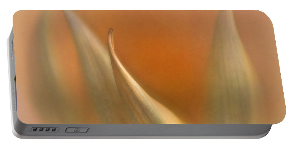 Abstract Portable Battery Charger featuring the photograph Gazania Abstract by David and Carol Kelly