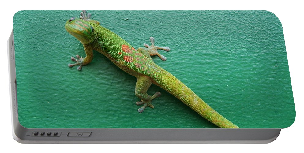 Gecko Portable Battery Charger featuring the photograph Gecko Crossing by Adrienne Franklin