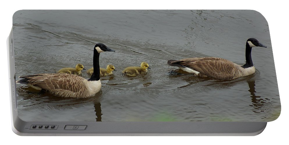 Digital Photography Portable Battery Charger featuring the photograph Geese And Goslings At The Flint River by Kim Pate