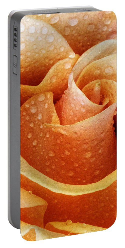 Rose Portable Battery Charger featuring the photograph Gemini Dew by Guy Shultz