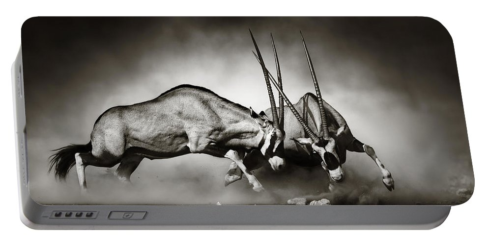 Gemsbok Portable Battery Charger featuring the photograph Gemsbok fight by Johan Swanepoel