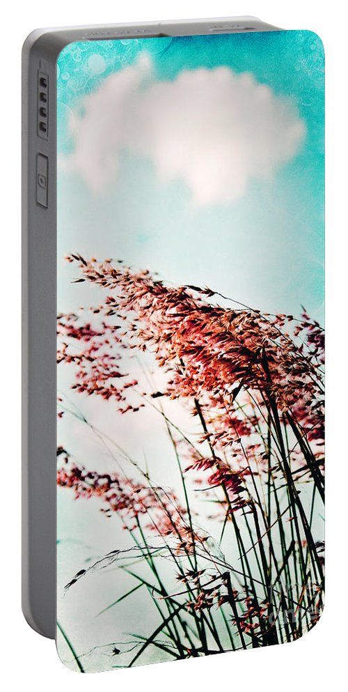 Grass Portable Battery Charger featuring the photograph Gentle Breeze 2 by Scott Pellegrin