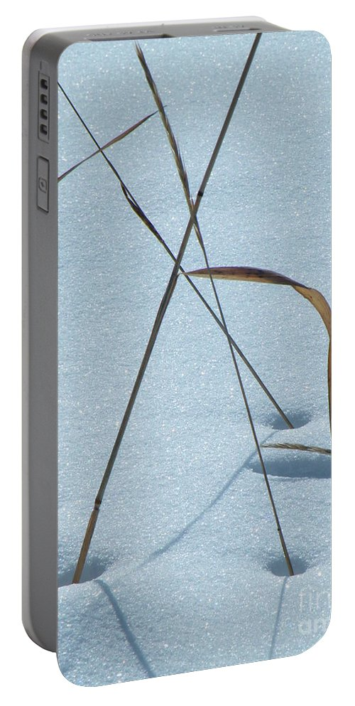 Dried Portable Battery Charger featuring the photograph Geometry Grass by Brian Boyle