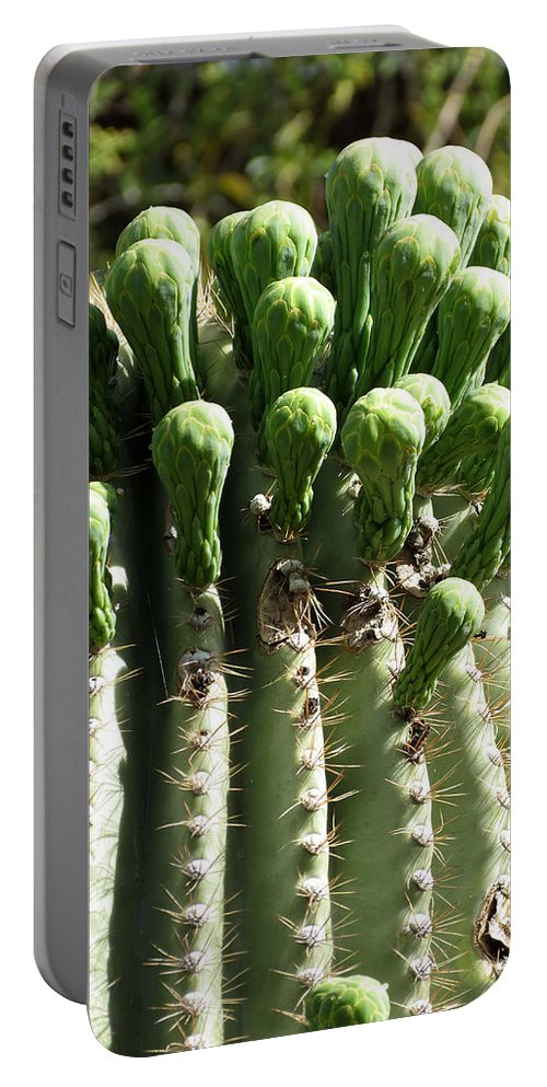 Cactus Portable Battery Charger featuring the photograph Getting Ready To Bloom by Laurel Powell