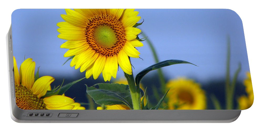 Sunflower Portable Battery Charger featuring the photograph Getting To The Sun by Amanda Barcon