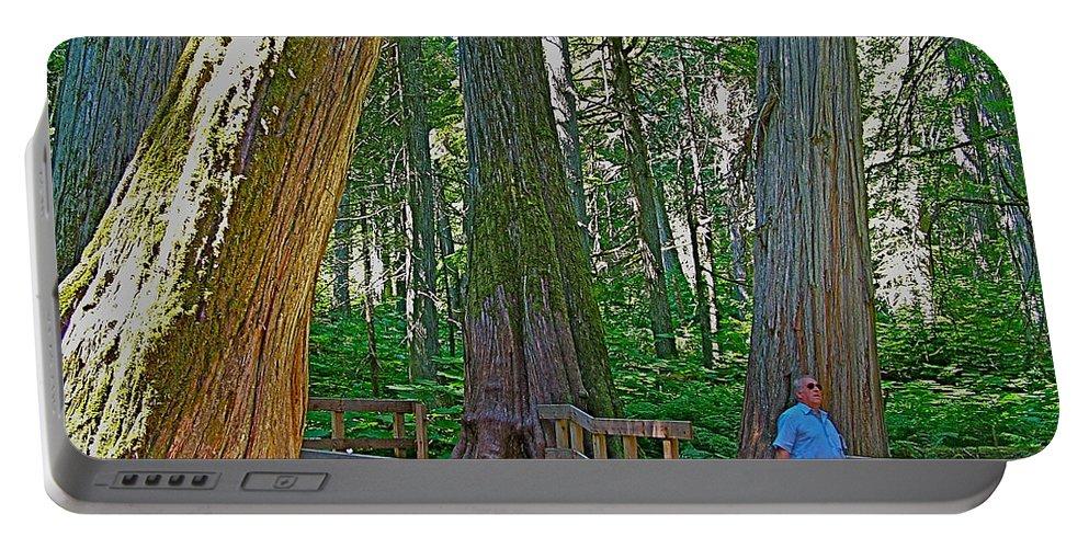 Giant Cedar Grove On Giant Cedars Trail In Mount Revelstoke Np Portable Battery Charger featuring the photograph Giant Cedar Grove On Giant Cedars Trail In Mount Revelstoke Np-bc by Ruth Hager