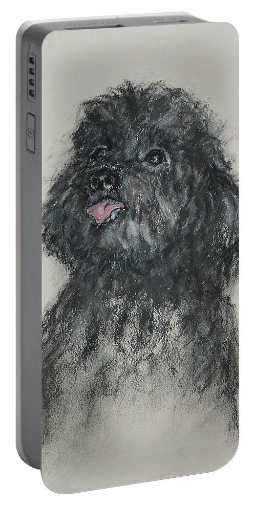 Poodle Portable Battery Charger featuring the drawing Gigi by Cori Solomon