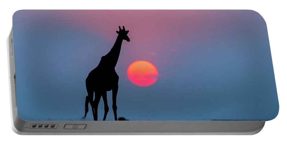 Nis Portable Battery Charger featuring the photograph Giraffe At Sunset Chobe Np Botswana by Andrew Schoeman