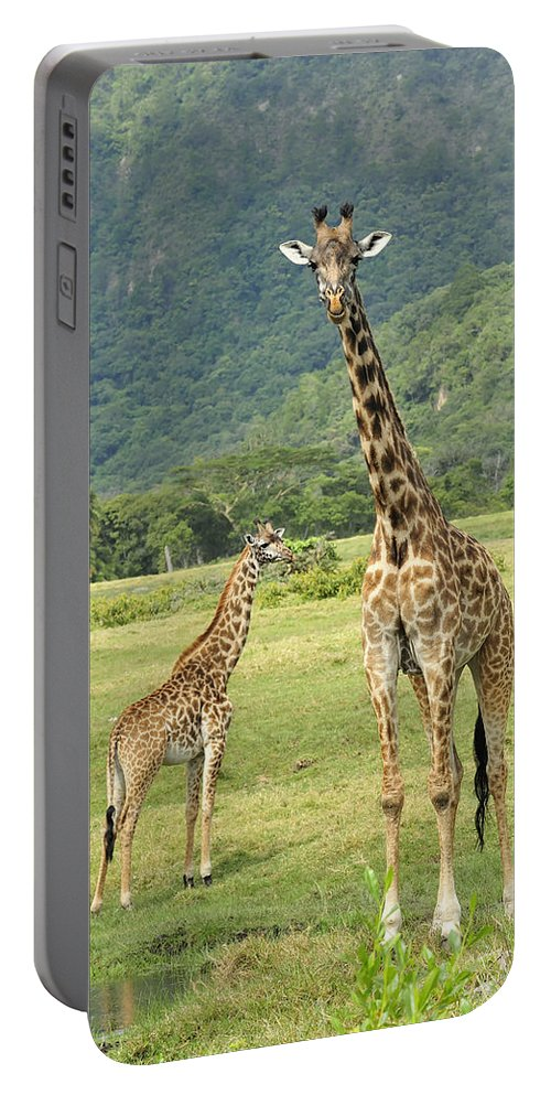Thomas Marent Portable Battery Charger featuring the photograph Giraffe Mother And Calftanzania by Thomas Marent