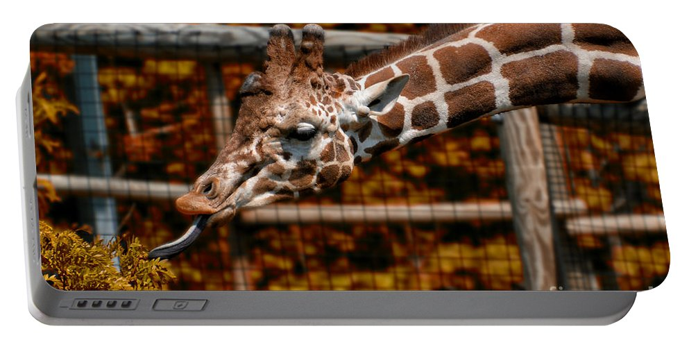 Animals Portable Battery Charger featuring the photograph Giraffe Showing His 20 Inch Tongue by Thomas Woolworth