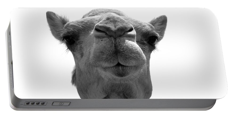 Camel Portable Battery Charger featuring the photograph Give Me A Kiss Bw by Donna Corless