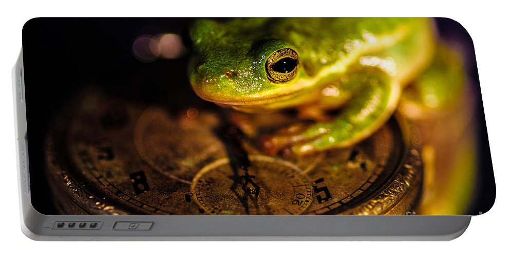 Frog Clock Portable Battery Charger featuring the photograph Give Me Time by Gerald Kloss