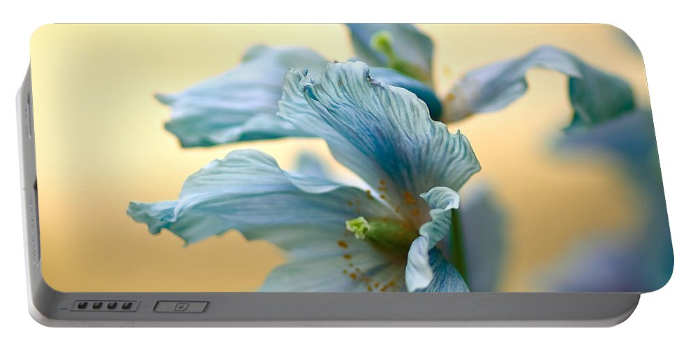 Longwood Gardens Portable Battery Charger featuring the photograph Glorious Blue by Samantha Eisenhauer