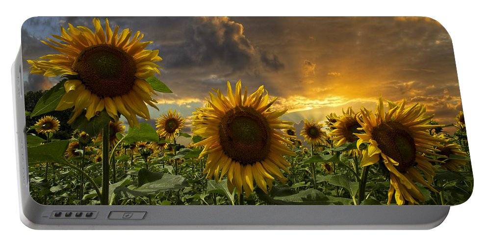 Austria Portable Battery Charger featuring the photograph Glory by Debra and Dave Vanderlaan