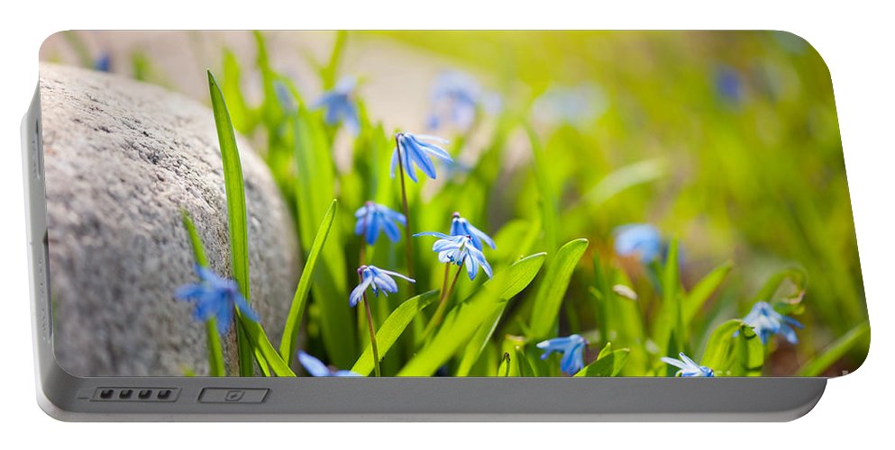 Abloom Portable Battery Charger featuring the photograph Scilla Siberica Flowerets Named Wood Squill by Arletta Cwalina