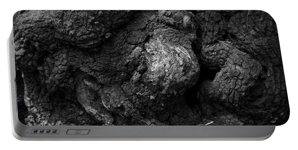 Black Portable Battery Charger featuring the photograph Gnarled Number 2 by Phil Penne