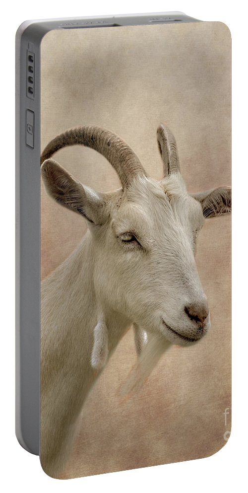 Goat Portable Battery Charger featuring the photograph Goat by Linsey Williams