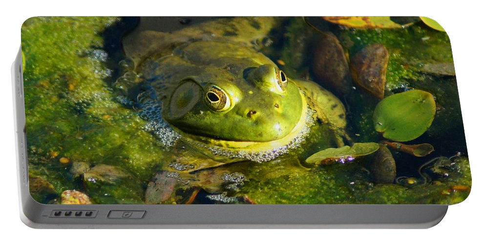 Frog Portable Battery Charger featuring the photograph Going Green by Joe Geraci