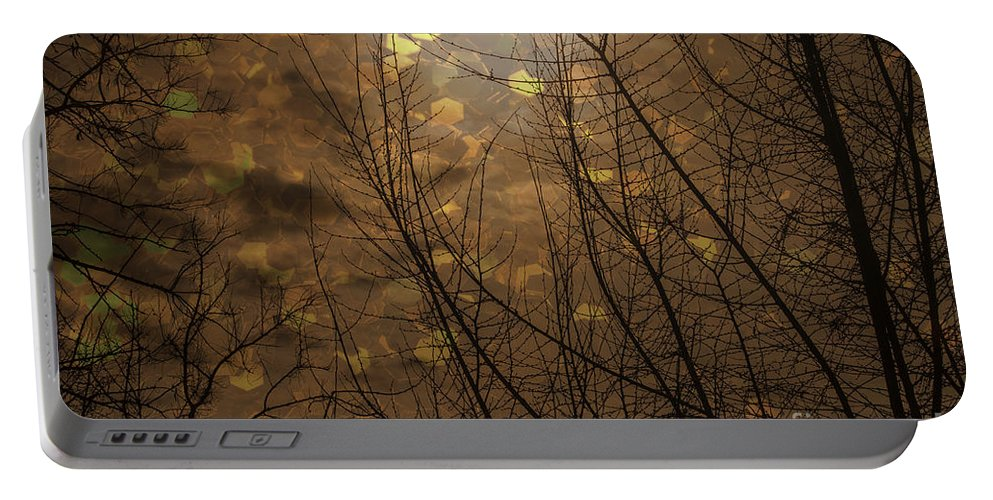 Abstract Portable Battery Charger featuring the photograph Golden Autumn Abstract Sky by Janice Pariza