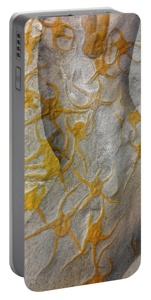 Golden Fossil Portable Battery Charger featuring the photograph Golden Fossil Female Form by Deprise Brescia