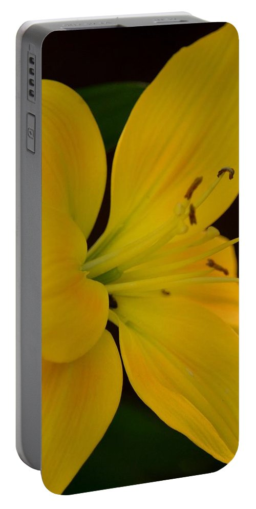 Golden Lily Glow Portable Battery Charger featuring the photograph Golden Lily Glow by Maria Urso