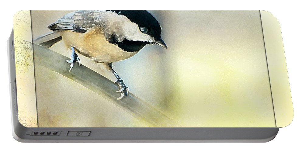 Nature Portable Battery Charger featuring the photograph Golden Morning Chickadee Photo Art by Debbie Portwood