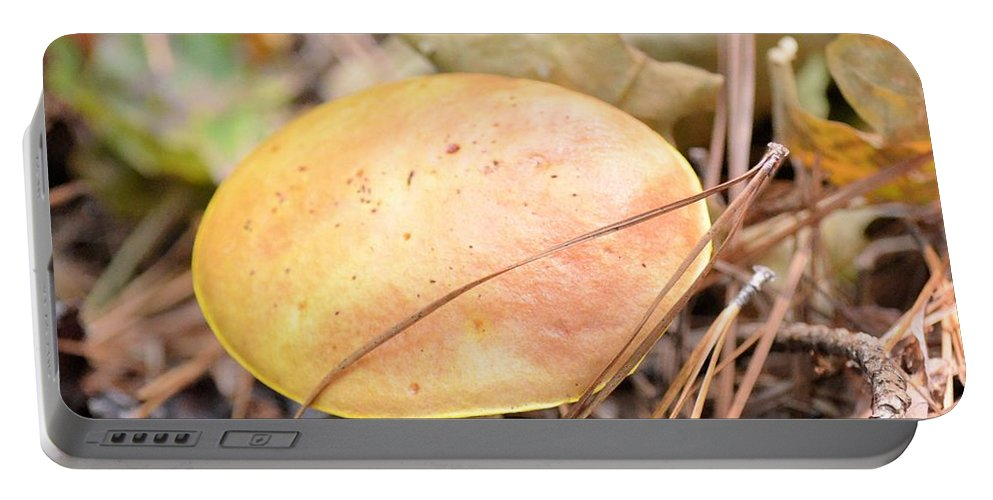 Golden Mushroom Portable Battery Charger featuring the photograph Golden Mushroom by Maria Urso