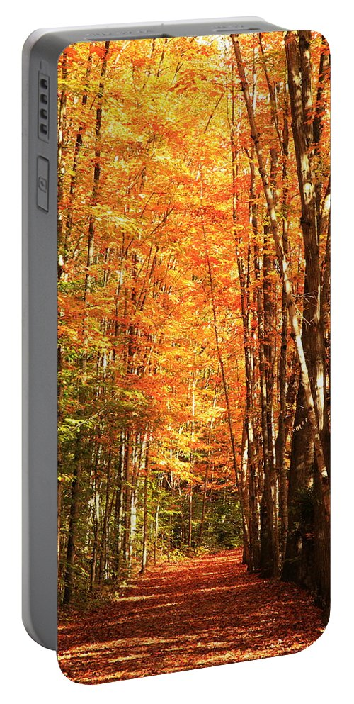 Fall Portable Battery Charger featuring the photograph Golden Path by Roupen Baker