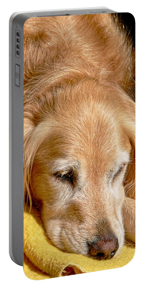 Golden Retriever Portable Battery Charger featuring the photograph Golden Retriever Dog On The Yellow Blanket by Jennie Marie Schell