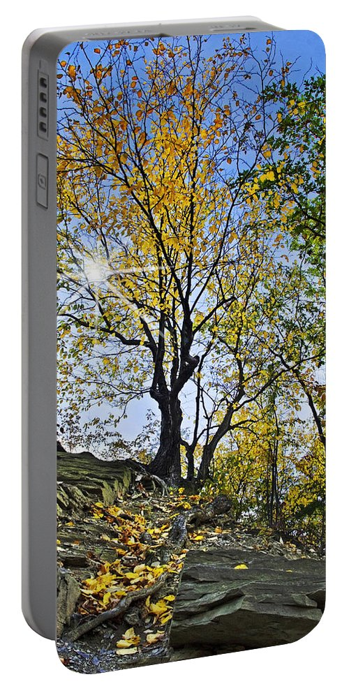 Fall Foliage Portable Battery Charger featuring the photograph Golden Tree by Christina Rollo