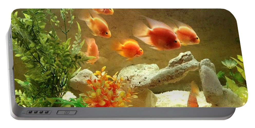Fish. Goldfish Portable Battery Charger featuring the photograph Goldfish At The Chinese Restaurant by Lois Ivancin Tavaf