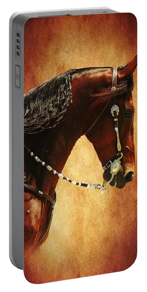 Animal Portable Battery Charger featuring the mixed media Gone Country by Davandra Cribbie