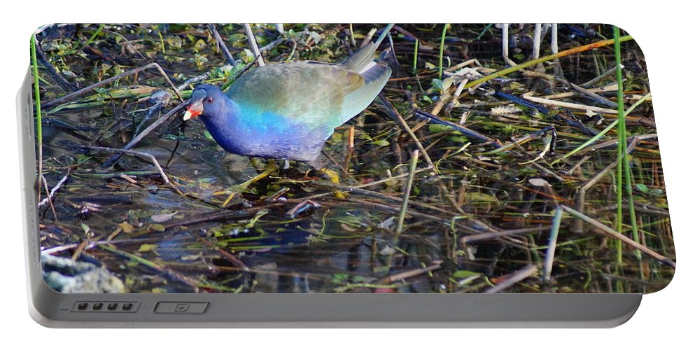 Everglades Portable Battery Charger featuring the photograph Gone Fishing by John Wall