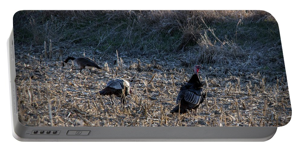 Turkey Portable Battery Charger featuring the photograph Gooble Gooble by Jayne Gohr