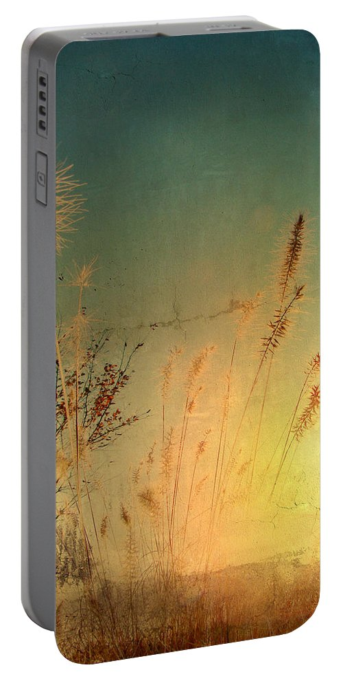 Grass Portable Battery Charger featuring the photograph Good Morning by Gothicrow Images